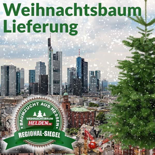 Weihnachtsbaum Lieferung in Frankfurt und Umgebung von den Weihnachtsbaum Helden
