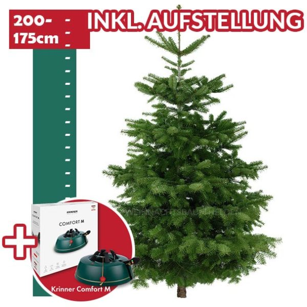 Weihnachtsbaum Helden Frankfurt Premium-Paket-inkl-2-Meter-Baum & Christbaumstaender