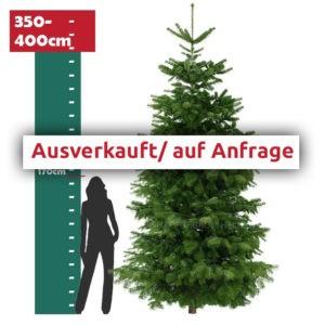 Ausverkauft - 4 Meter Weihnachtsbaum