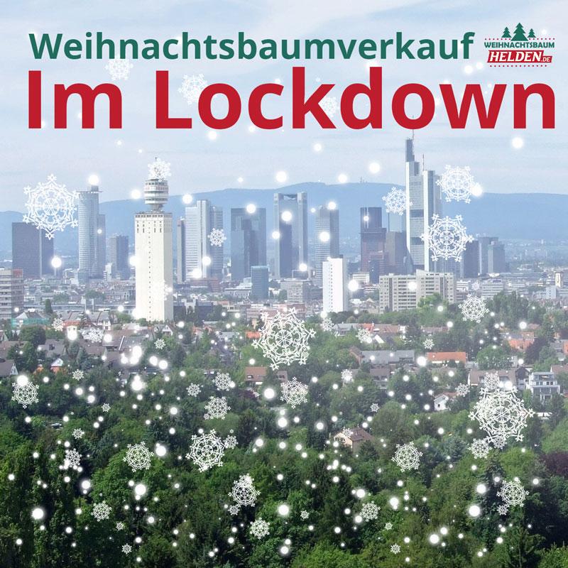 Weihnachtsbaumverkauf Frankfurt im Lockdown